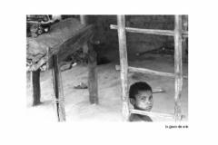 2005PinoBertelliAMAZONIA_Pagina_170