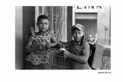 2005PinoBertelliAMAZONIA_Pagina_188