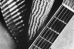 016_Tina Modotti, Pannocchia, chitarra e cartucciera (per una canzone messicana), 1927