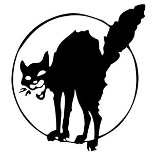 Dialogo veridico tra un fotografo di strada e il suo gatto nero Zorba